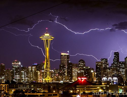 Photos: Summer Lightning Storm in Seattle