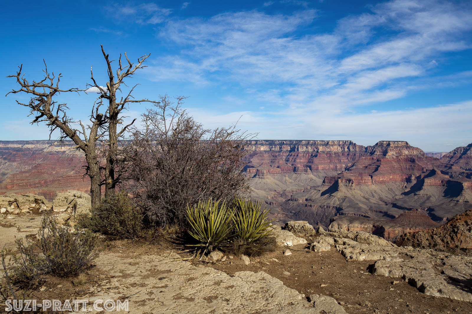 Grand Canyon arizona travel photography